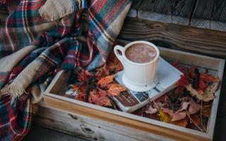 Kolorowa jesień!