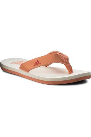 adidas Japonki - Beach Thong 2 K CP9379 Chacor/Reacor/Cwhite