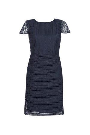 LAUREN RALPH LAUREN Kobieta Sukienki dzienne - Sukienki krótkie NAVY SHORT SLEEVE DAY DRESS