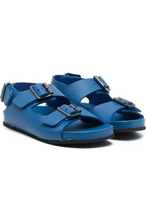 GALLUCCI Blue