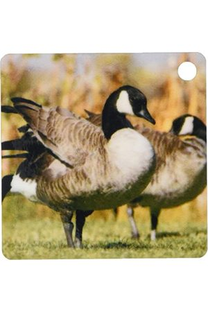3dRose Kanadyjskie gęsi, ptaki, schronienie łososia, Wyoming Us51 Rnu0013 Rolf Nussbaumer brelok 6 cm; różne