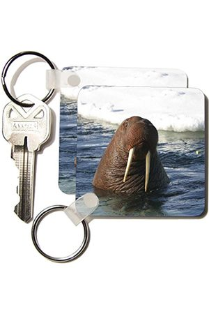 3dRose Bull Morrus breloczek do kluczy, 2,25 cala, zestaw 2 breloków 6 cm, różne