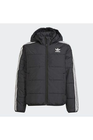adidas Kurtki - Adicolor Jacket