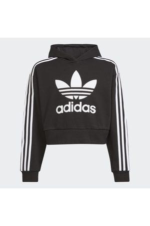 adidas Bluzy z kapturem - Adicolor Cropped Hoodie