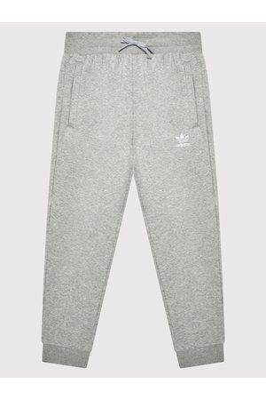 adidas Spodnie dresowe adicolor H32407 Regular Fit